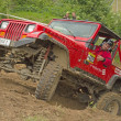 Red off-road car on top of a steep hill — Stock Photo