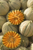 Cantaloupe melons ready for sale on the market. — Stock Photo