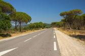 The road through the Mediterranean landscape. — Stock Photo