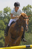 Woman rider in equestrian race jumps — Stockfoto