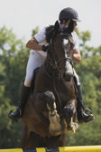 Equestrian race — Stock Photo