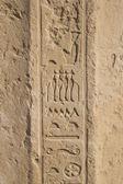 古いエジプトの象形文字、石に刻まれました。 — ストック写真