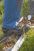 Buty pieszych. — Zdjęcie stockowe