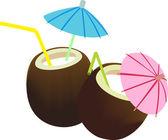 Coconut juice — Stock Vector