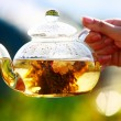 Glass teapot with white chinese tea - Stock Photo