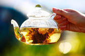 Glass teapot with white chinese tea — Stock Photo