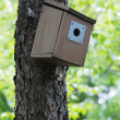Bluebird box on tree - Stock Photo