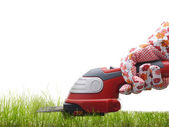 Grass trimming — Stock Photo