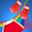 Boxing glove setting - Foto de Stock