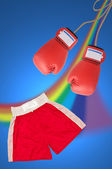 Boxing glove setting — Stockfoto