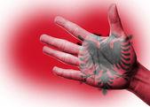 Jublande fläkt med målning albaniens flagga — Stockfoto
