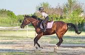 Riding — Stock Photo