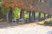 Old city park in sunshine early morning — Stock Photo