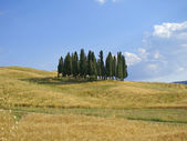 Orcia Valley 1 — Stock Photo
