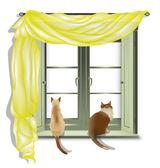 Patrząc z okna 2 koty — Wektor stockowy