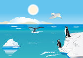 Penguins at the South Pole 1 — Stock Vector