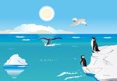 Pinguini al polo sud 1 — Vettoriale Stock