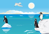 Penguins at the South Pole 2 — Stock Vector