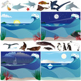 Animales y escenarios de mar — Vector de stock
