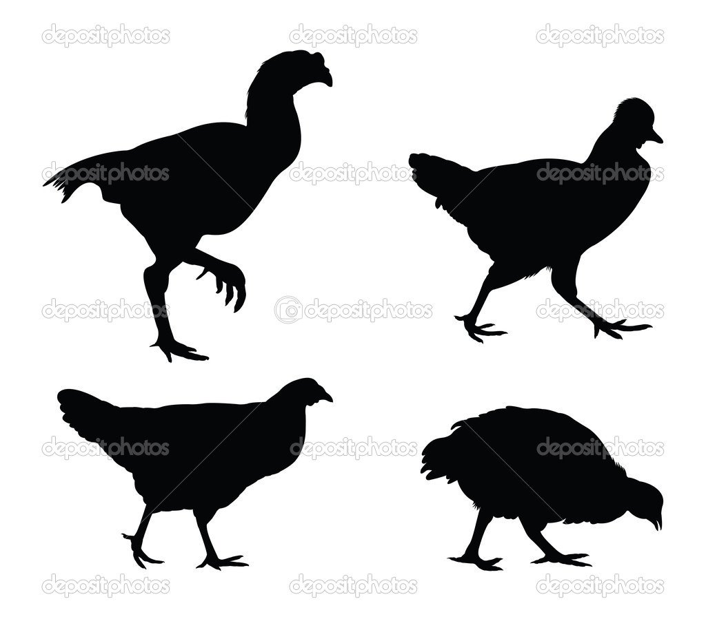 Vector rooster and chicken silhouettes — Stock Vector #10881825