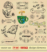 Vector set, vintage, elements for design. — Stock Vector
