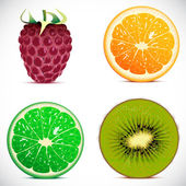 Vector illustration - set of fruits icons — Stock Vector