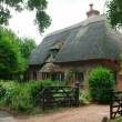 Farm house whit an thatched roof — Stock Photo