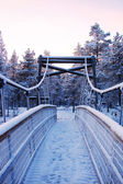 Wooden bridge to the wilderness in snow close-up — Stock Photo