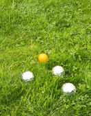 The bowls balls on a green grass. — Stock Photo