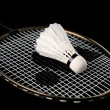 Badminton racket and shuttlecock — Stock Photo