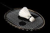Badminton racket and shuttlecock — Stock Photo