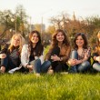 Stock Photo: Happy smiling group sitting on grass