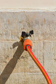 Hose for watering — Stock Photo
