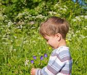 Portrait of the little boy — Stockfoto