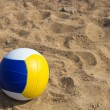 Volleyball ball — Stock Photo #11560508