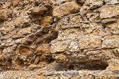 石灰岩 — ストック写真