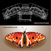 Creative architectural background with a butterfly — Stock Vector