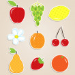 Scrapbook elements - cute fruits textile stickers — Stock Vector