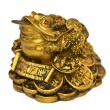 chinese feng shui frog with coins — Stock Photo