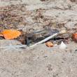 Stock Photo: Message in a bottle on the beach with seashells and starfish