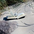 Read on the beach. Book lies open on the sandy beach between the dune grass — Stock Photo #11038370