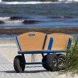 A lonely handcart standing on the way to the beach — Stock Photo