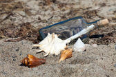 Message in a bottle on the beach of the Baltic Sea with mussels — Stock Photo
