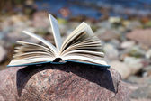An opened book lies on a rock on the beach — Stock Photo
