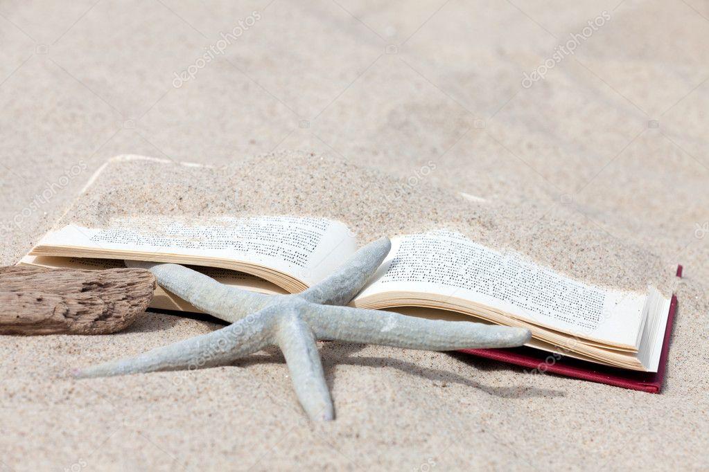 depositphotos_11038878-An-open-book-with-a