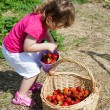 ������, ������: Little girl on the strawberry field