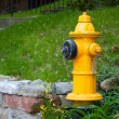 Stockfoto: Yellow Fire Hydrant Toronto Canada