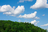 Skies over Muskoka — Stock Photo