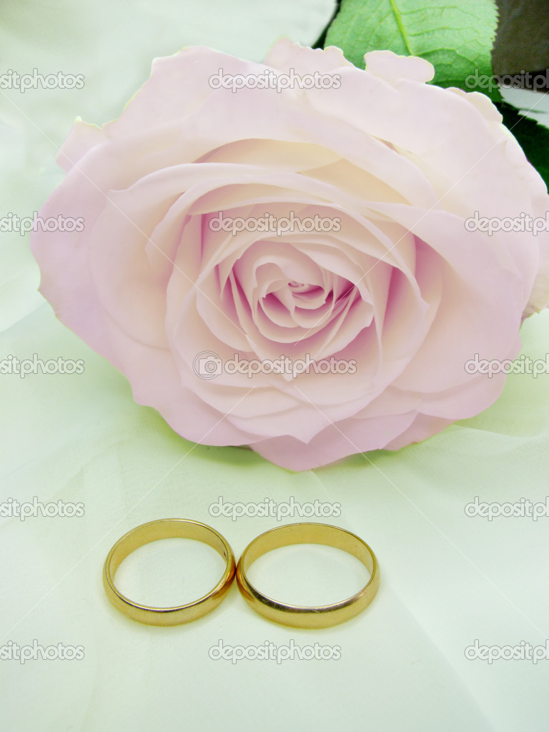 Pink rose and wedding rings on silk beige background — Stock Photo #10756690