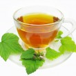 Herbal tea with currant extract — Stock Photo